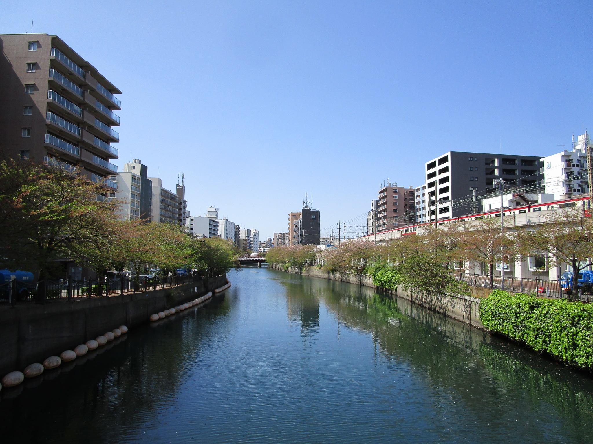 隣接する大岡川